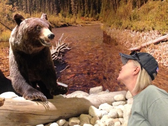 My encounter witha stuf bear