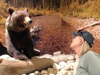 My encounter witha stuf bear