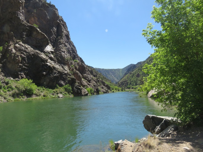 Gunnison River Bottom